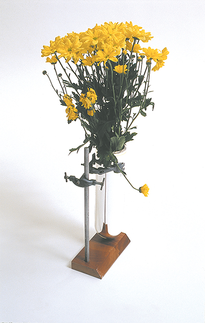 Hold-on Vase 2002 Vacuum flask, chemistry clamps, wood  150 x 300 x 180mm, Unique