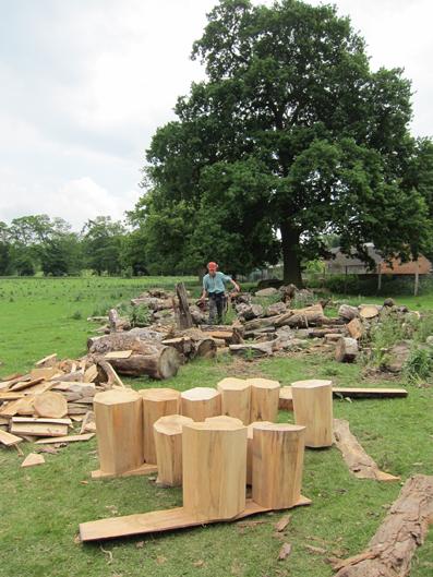Making the Stump Stools