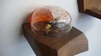 Karl Fritsch Display Case 2011